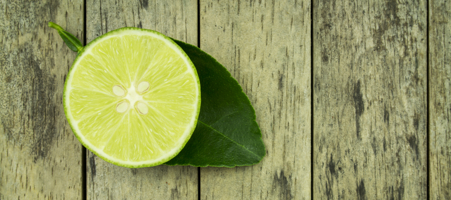 Working at FreshLime – The Nitty-Gritty