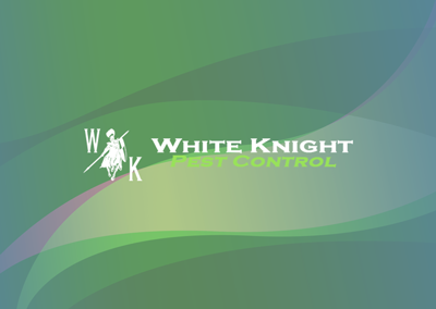 White Knight Pest Control