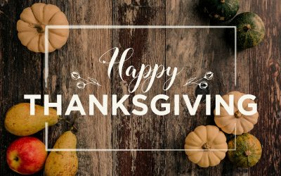 It's Thanksgiving Time and FreshLime is Thankful for Small Businesses!