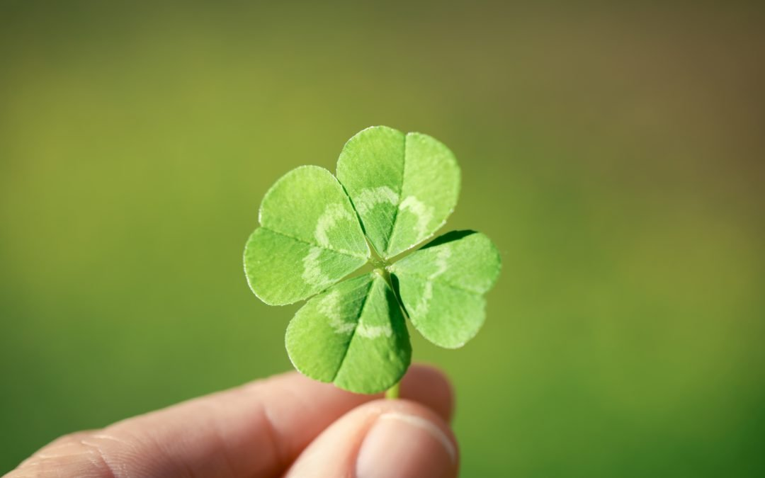 Customer Retention Requires More than Luck